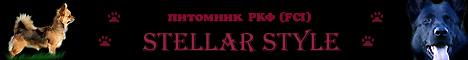 Питомник РКФ (FCI) STELLAR STYLE - ЧИХУАХУА. И многое другое.